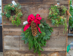 Holiday Live Evergreen Swag with Bow & Pinecone