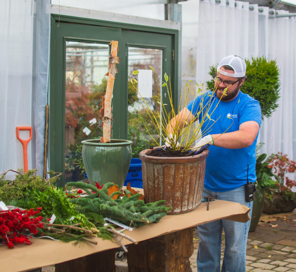 Winter Planter Demonstration with Yellow Twig Dogwood